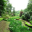菖蒲園の薬師池公園